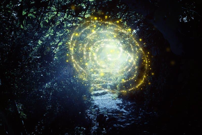 路和石台阶在有神秘的太阳光和萤火虫的不可思议和神奇黑暗的森林里 童话当中概念 库存例证