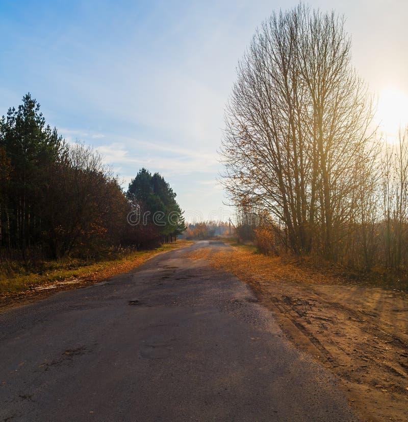 路在乡下 库存照片
