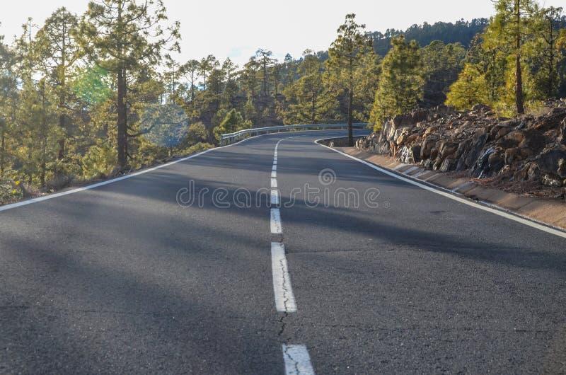 路在多云天在El泰德峰国家公园 免版税库存照片