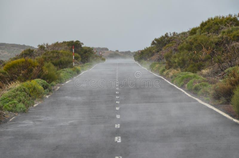 路在多云天在El泰德峰国家公园 库存图片