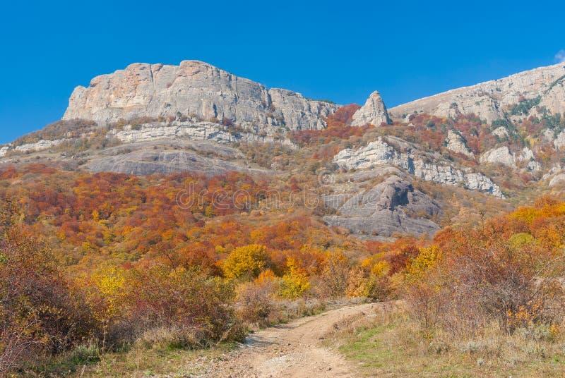 路在山牧场地的Demerdzhi,克里米亚半岛半岛秋季森林里 免版税库存图片