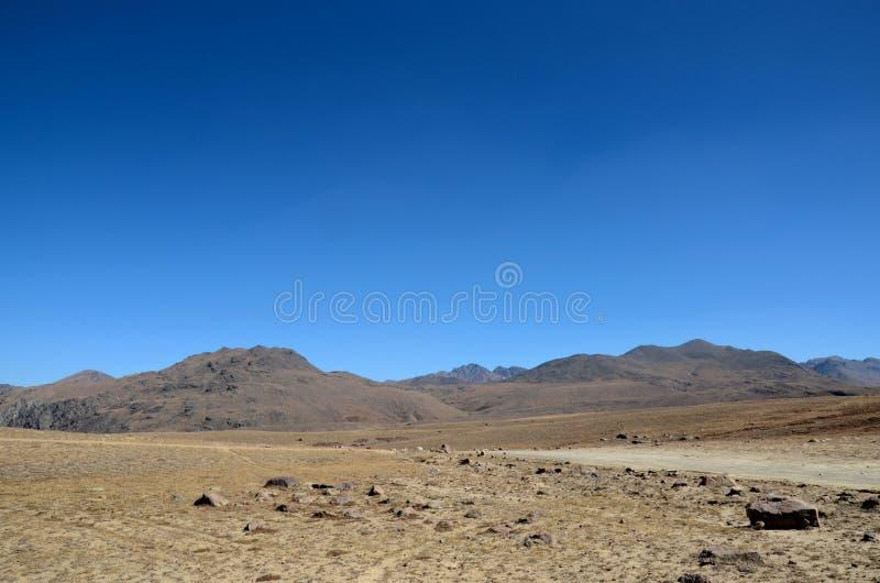 路在干燥和贫瘠Deosai平原基尔吉特Baltistan巴基斯坦分叉 免版税库存照片