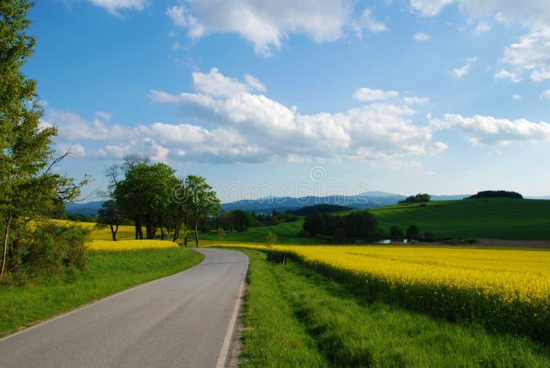路在春天 免版税图库摄影