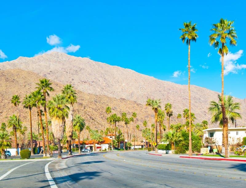 路在棕榈泉 免版税库存照片