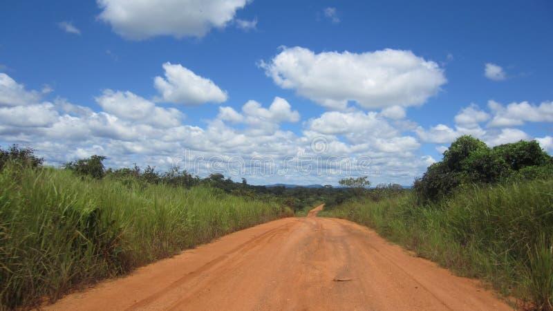 路在森林里在Tikar国家 图库摄影