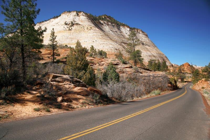 路在美国,锡安NP,美国 免版税库存图片