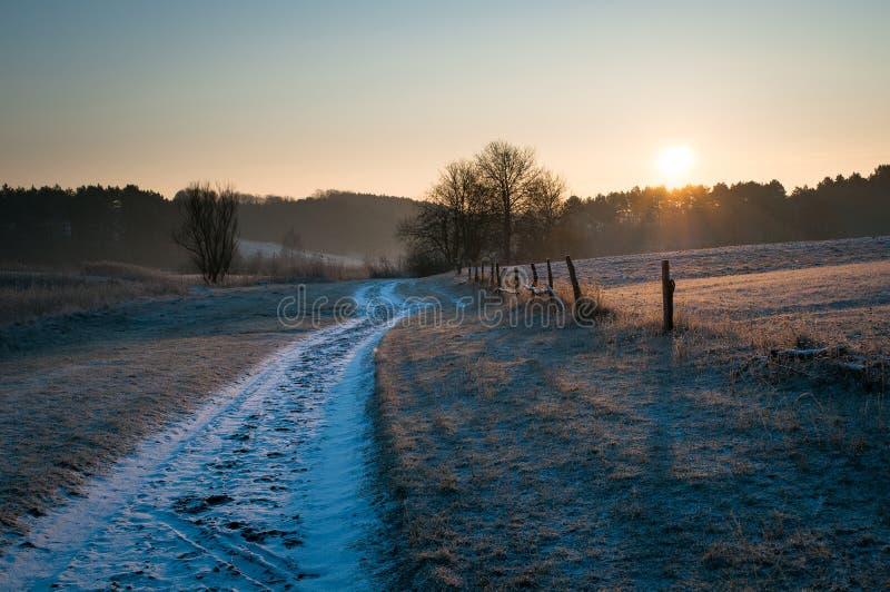 路在领域冷淡的早晨 免版税库存图片