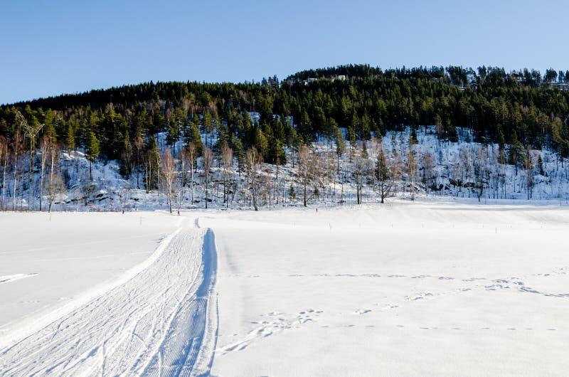 路在Bogstadvannet冻湖的道路和滑雪轨道在奥斯陆挪威 免版税图库摄影