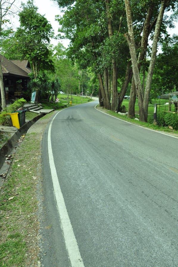 路在lumphang的国家公园 免版税库存照片