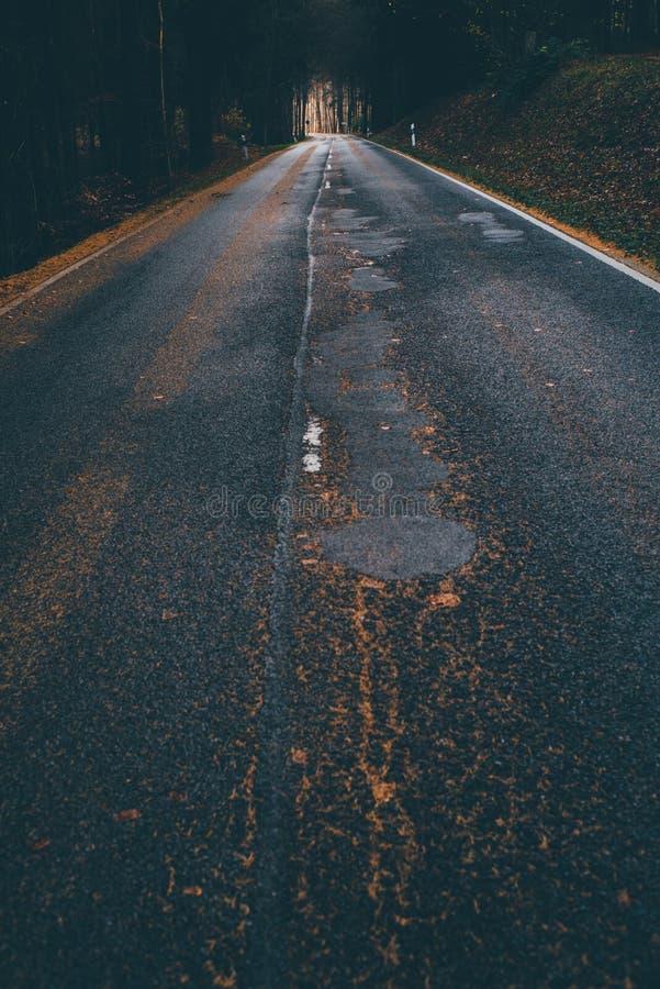 路在Odenwald森林里 免版税库存照片