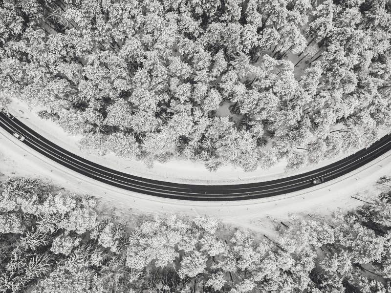 路寄生虫鸟瞰图在多雪的森林里 免版税库存照片