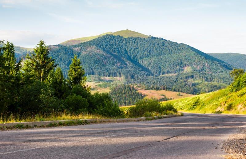 路对山通过森林 库存照片