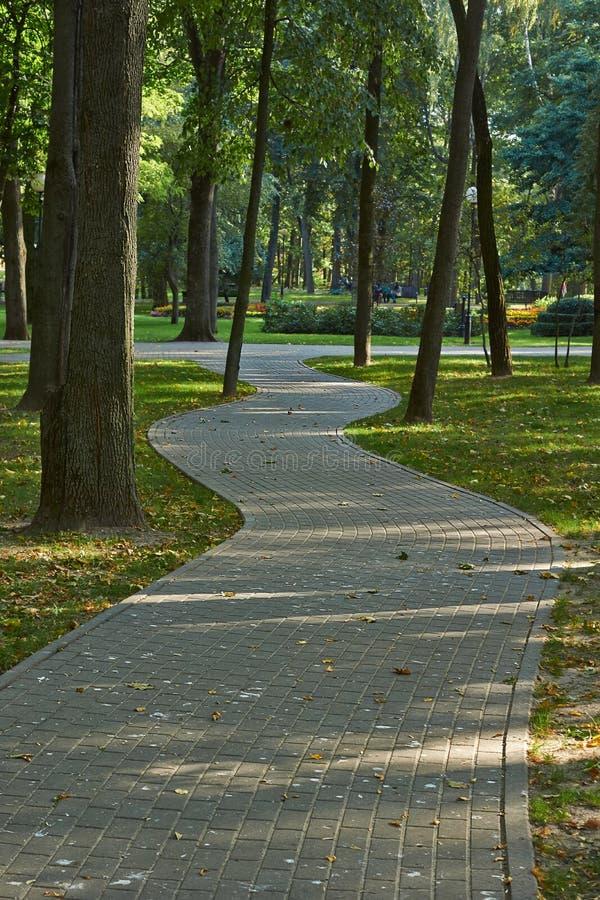 绕路径在秋天公园 免版税库存照片