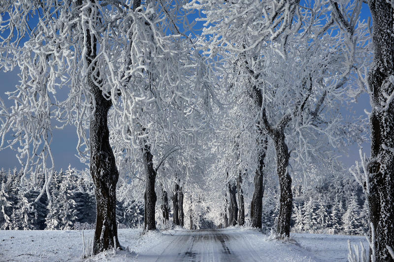 冻结路径 免版税库存照片