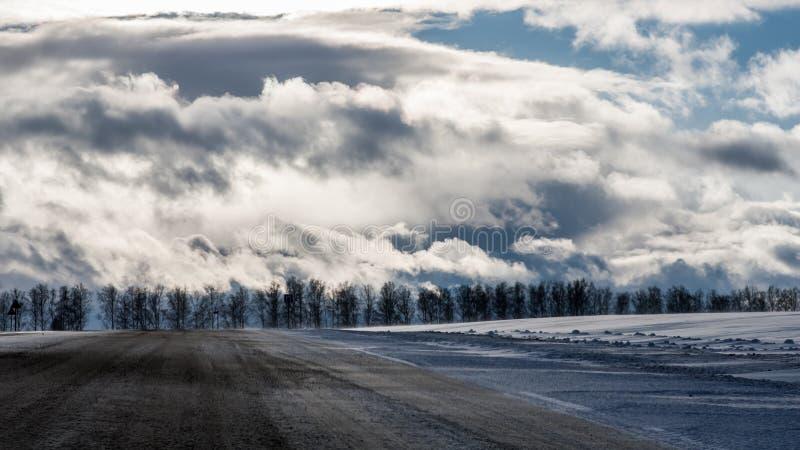路旁和一个冬天森林在剧烈的多云和太阳下 免版税库存照片
