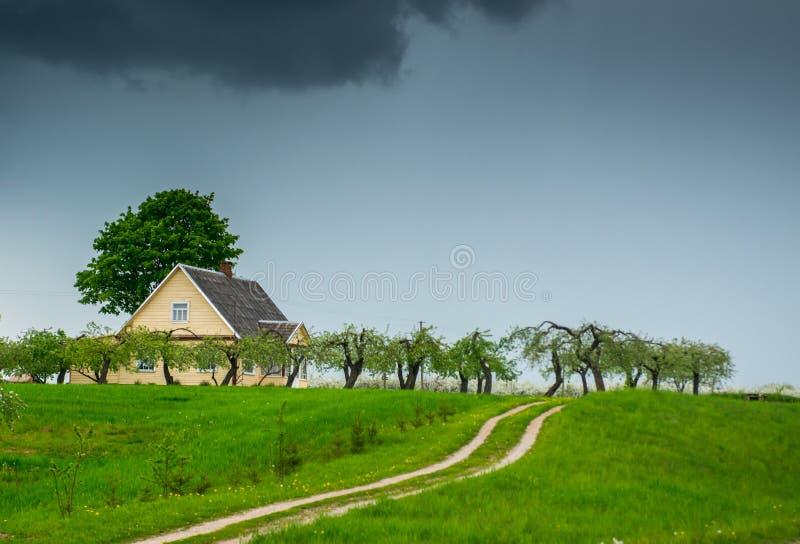 路春天风景在木房子附近的 库存图片