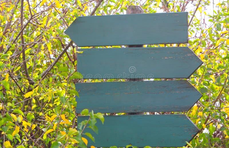 路标在秋天森林里 库存图片