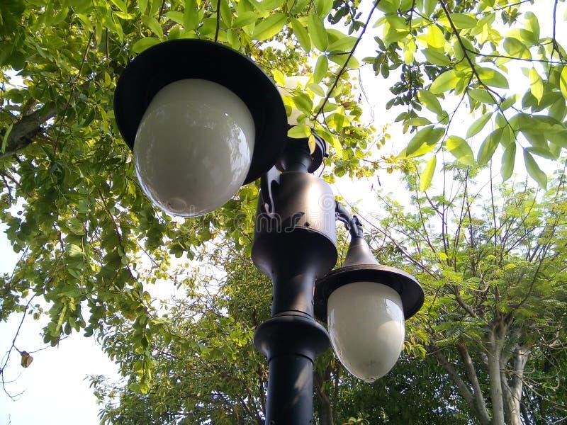 路灯到底在公园 图库摄影
