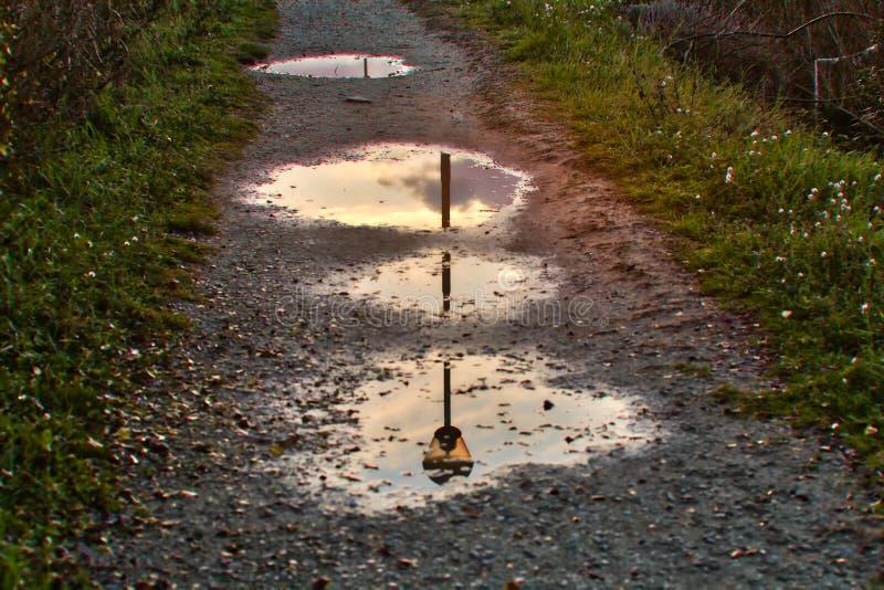 路灯柱在三个水坑反射了 免版税库存照片