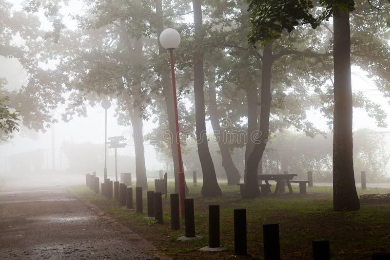 路灯柱在有雾的公园 免版税库存图片