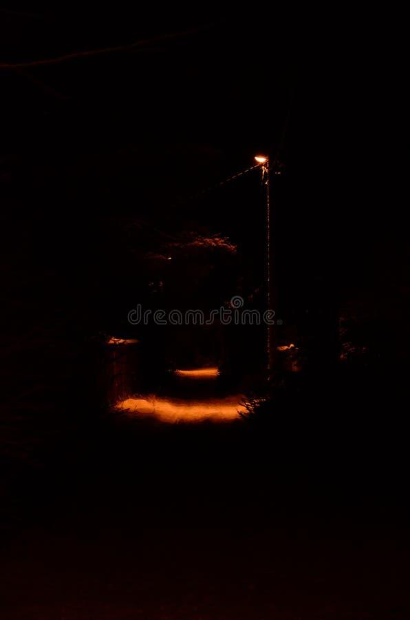 路灯柱夜照亮在黑暗的小径的一个小斑点 库存图片
