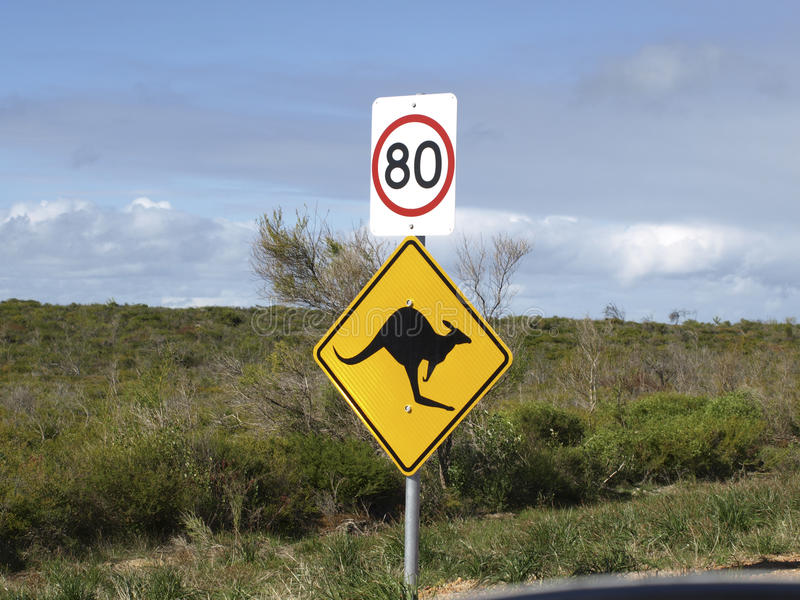 路牌动物黄色速度 库存照片