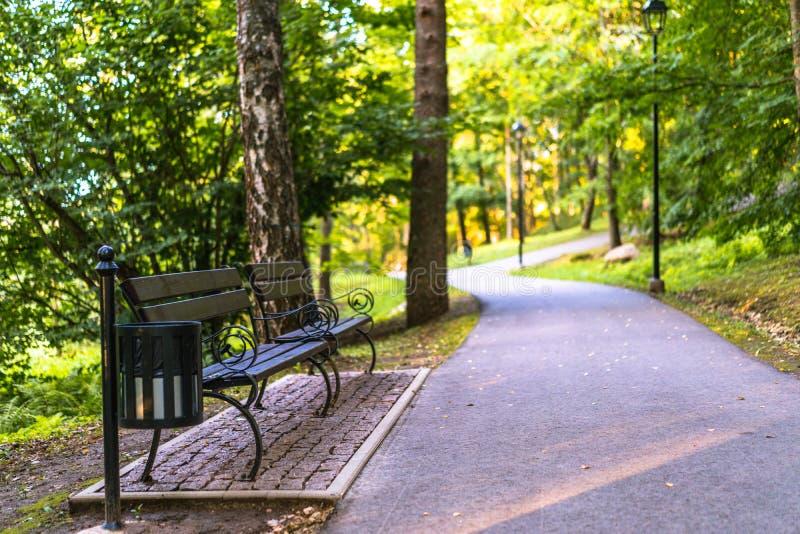 路的五颜六色的照片在一个公园,在森林之间-有在边的公园长椅的与文本的空间 免版税库存照片