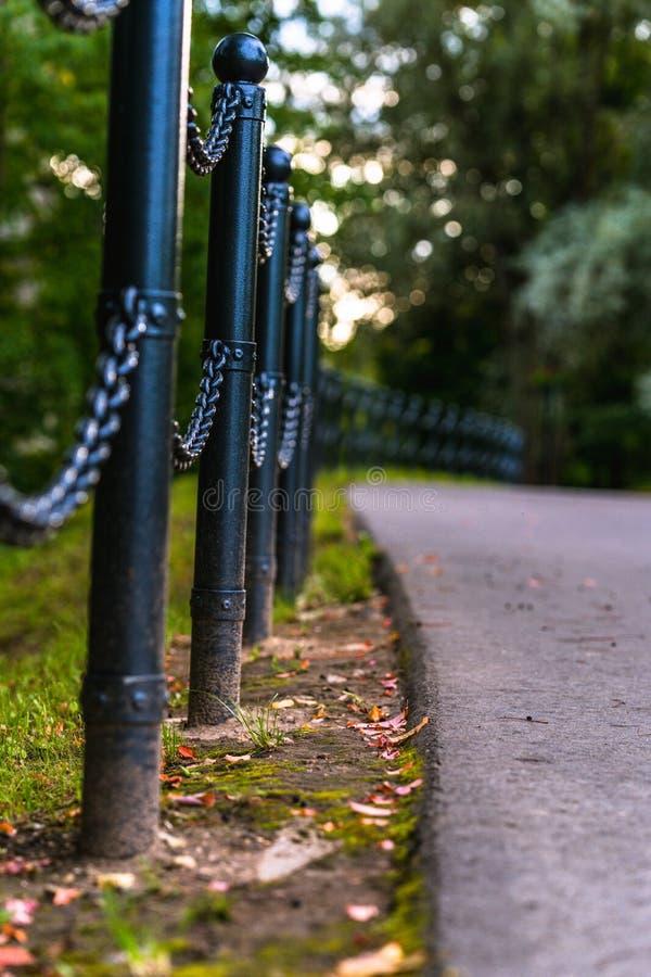 路的五颜六色的照片在一个公园,在森林-链篱芭的特写镜头视图之间有与空间的被弄脏的背景文本的 免版税库存图片