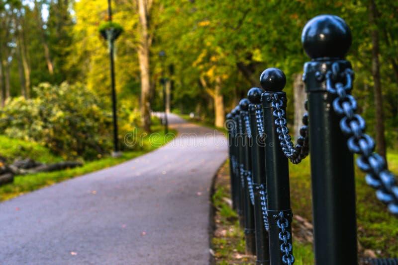 路的五颜六色的照片在一个公园,在森林-链篱芭的特写镜头视图之间有与空间的被弄脏的背景文本的 库存图片