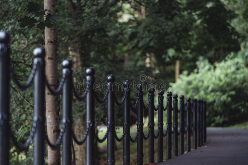 路的喜怒无常的照片在一个公园,在成为不饱和的森林之间-, 免版税库存照片