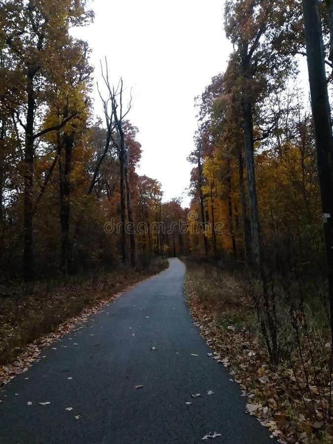 路的末端好极了先生的 秋天 库存图片