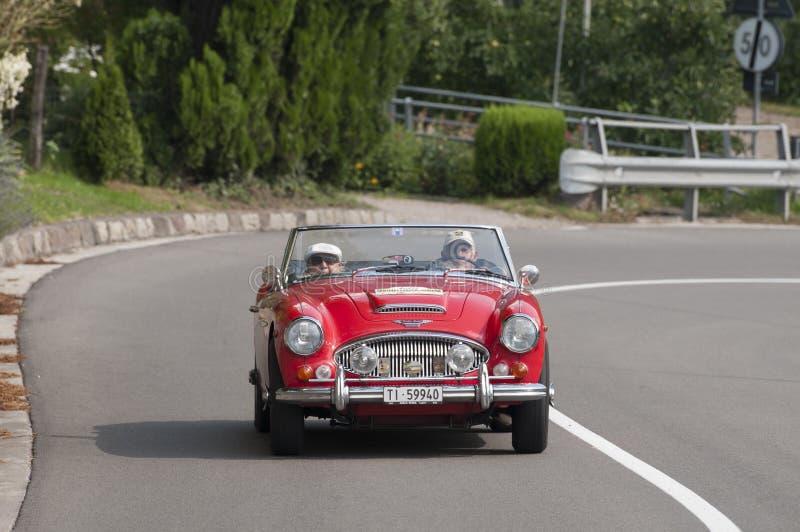 路的经典奥斯汀Healy,梅拉诺,意大利 免版税库存图片