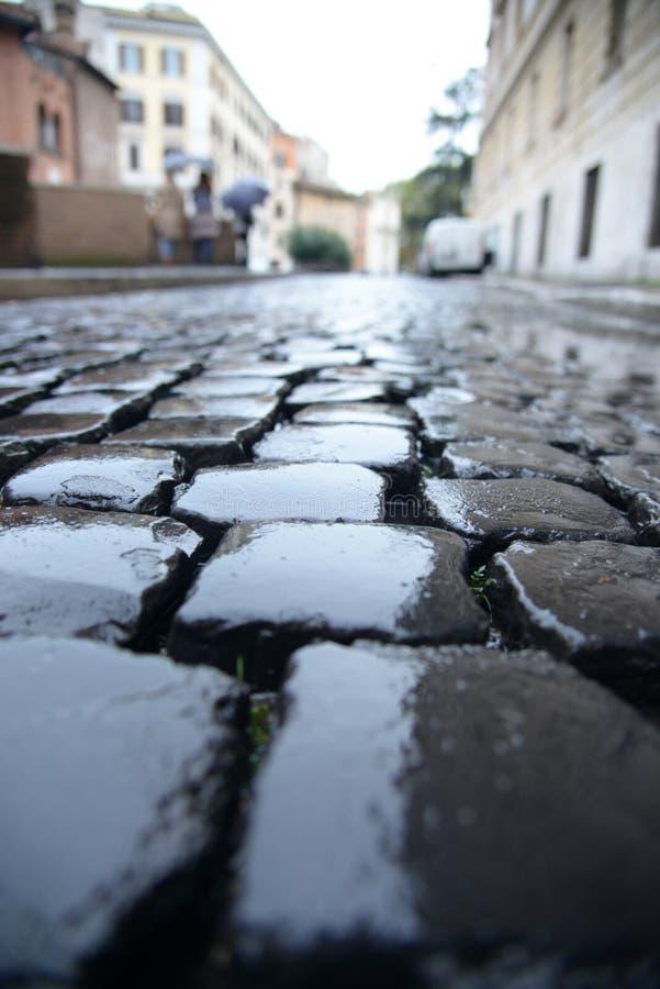 路石头 库存照片