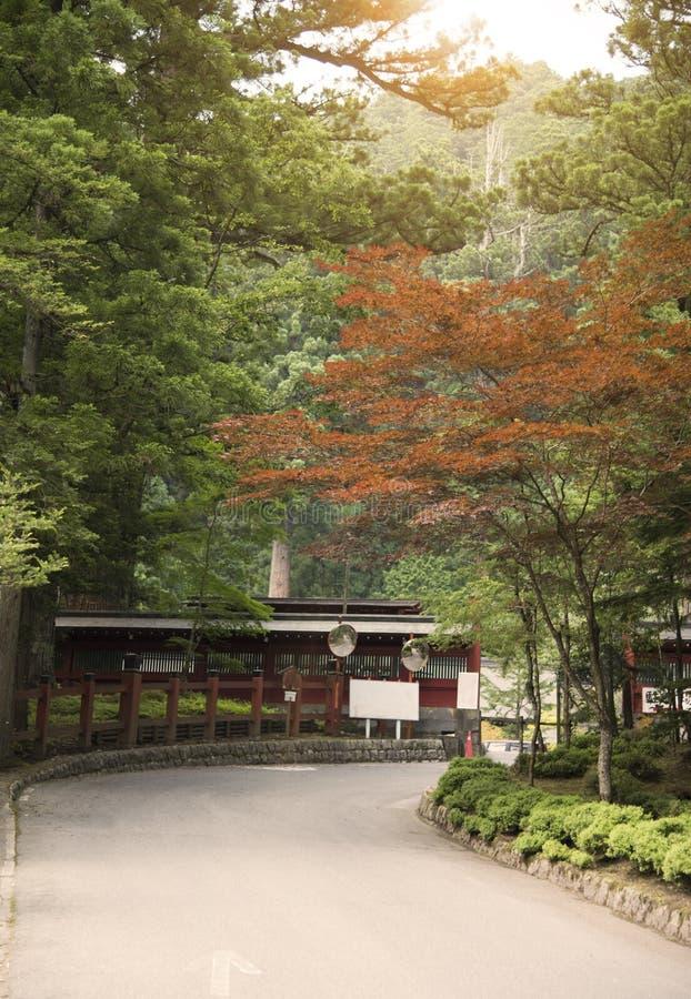 路线和槭树在rinnoji寺庙,日光,日本 免版税图库摄影