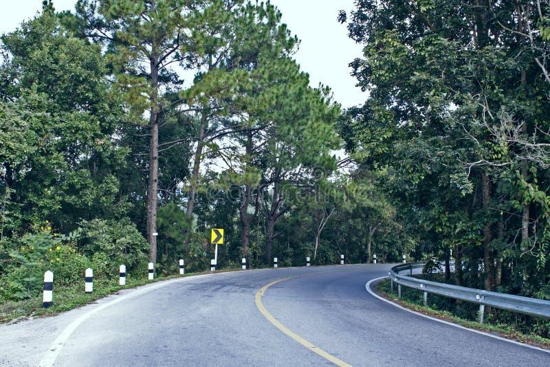 路线涂柏油向右转的山环境美化 库存图片