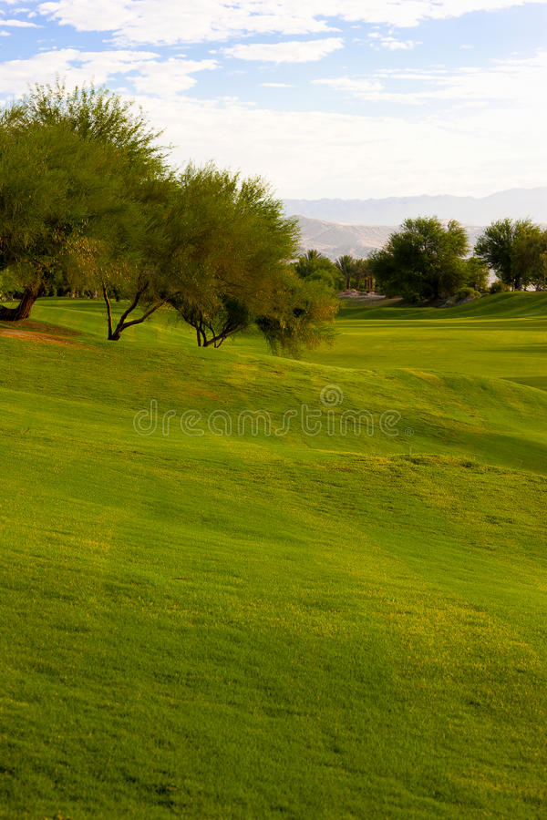 路线高尔夫球豆科灌木结构树 库存图片