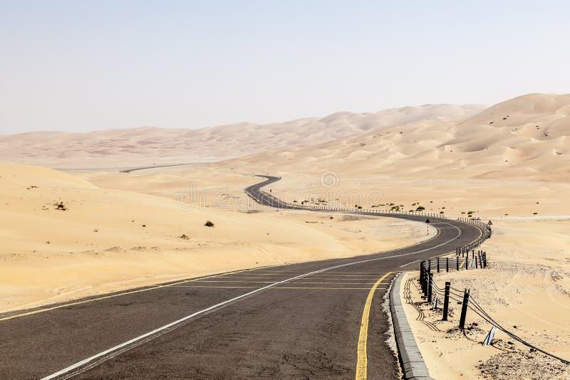 路通过沙漠 免版税图库摄影