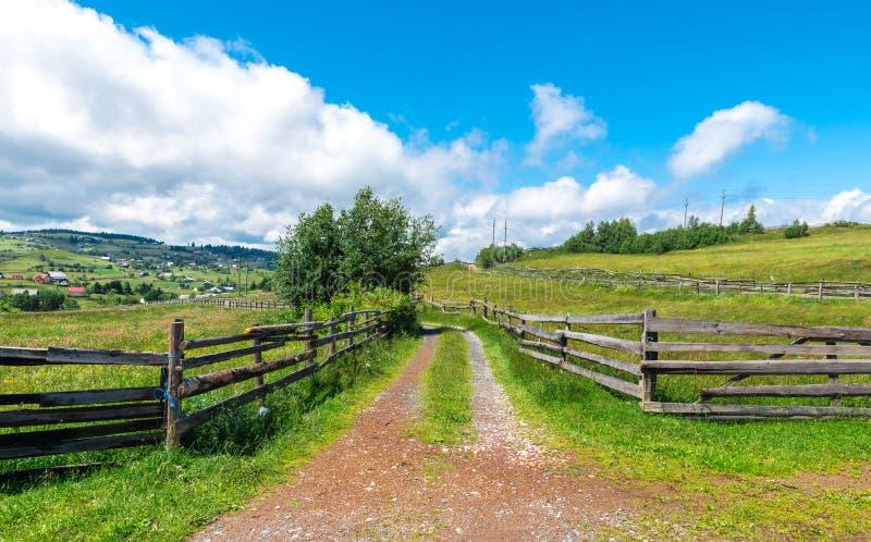 路通过私有被操刀的绿色牧场地 免版税库存照片
