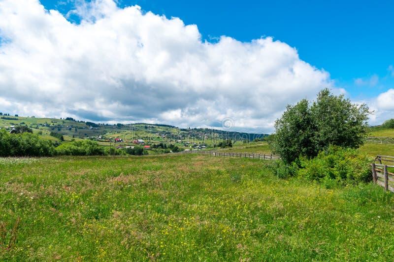 路通过私有被操刀的绿色牧场地 库存照片