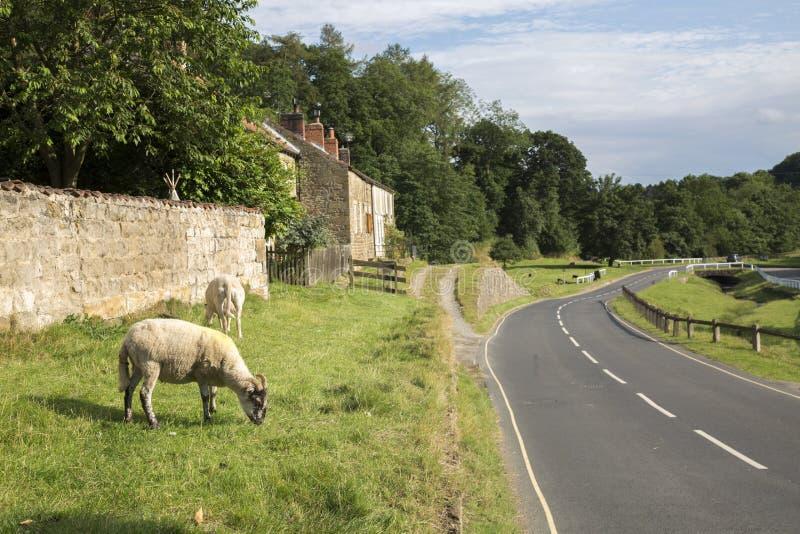 路通过赫顿le Hole Village,北约克停泊,约克夏 免版税库存照片