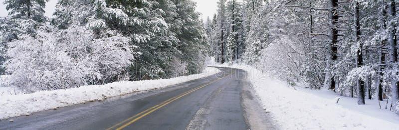 路通过雪 图库摄影