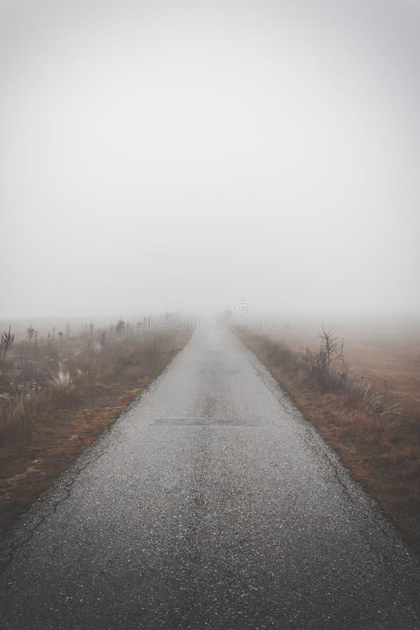 路通过雾 免版税库存照片