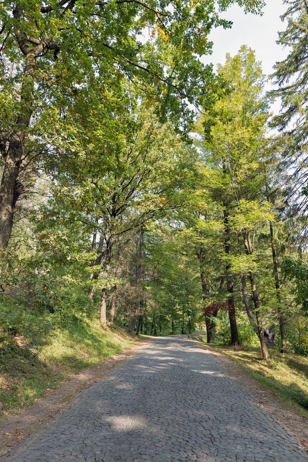 路铺与导致Schonborn城堡的大卵石 Chynadiyovo,乌克兰 图库摄影