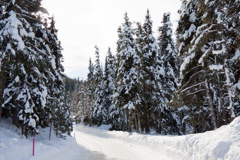 路雪风暴 图库摄影