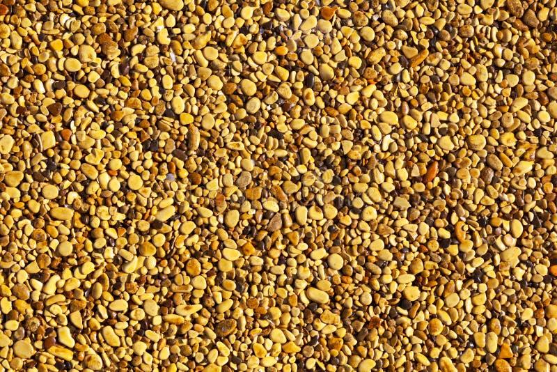 路面上的小黄色石头作为背景 免版税库存图片