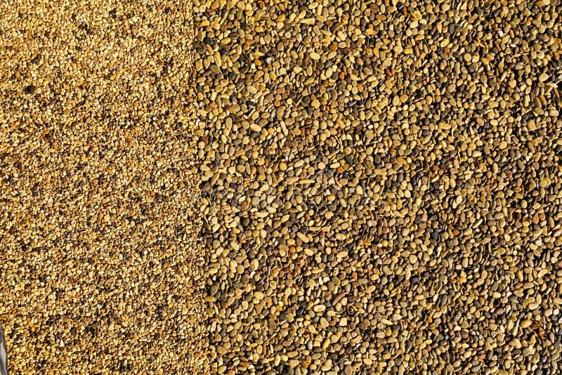 路面上的小黄色石头作为背景 库存照片