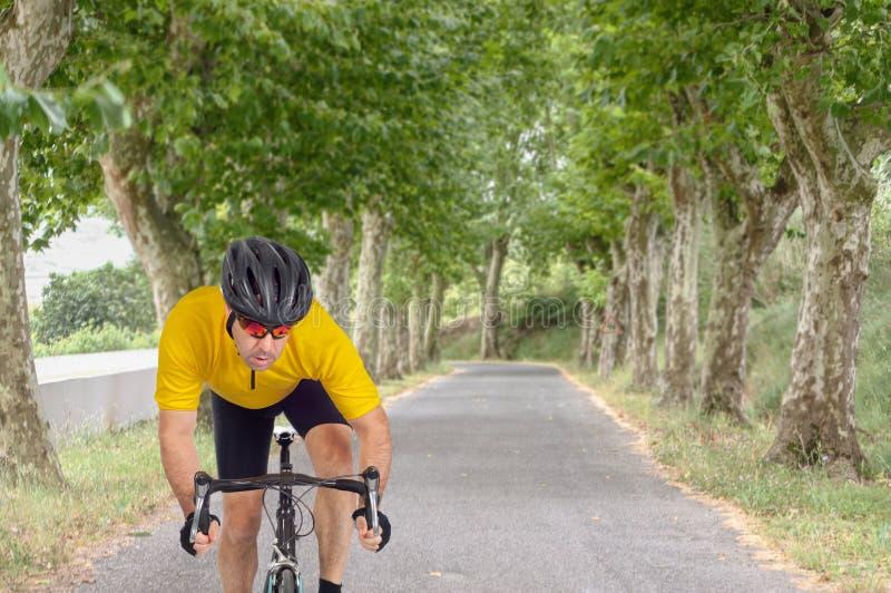 路骑自行车者 库存照片