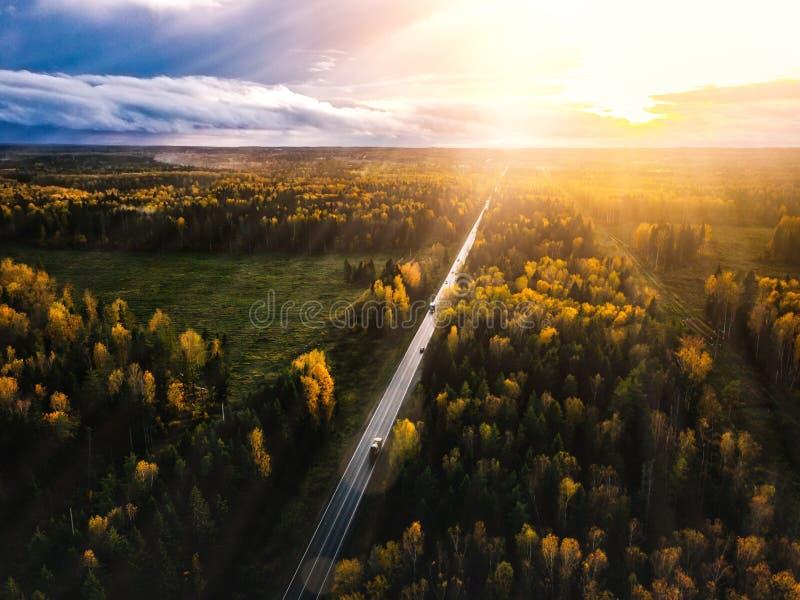 路鸟瞰图在日落的美丽的秋天森林里在农村芬兰 免版税图库摄影
