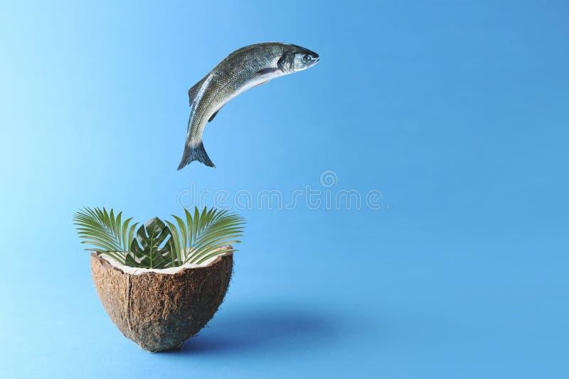 跳出在椰子的鱼棕榈叶 创造性的最小的食物概念 库存图片