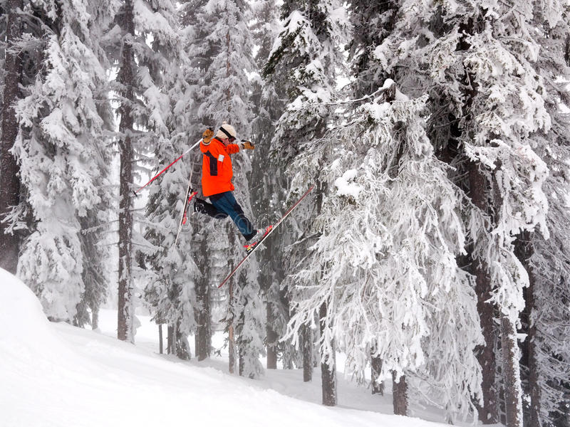 跳滑雪 库存图片